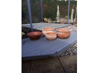 Terracota Planters (various shapes & sizes)