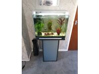 60 ltr tank and stand