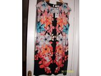 Ladies wallis dresses size 14 new with tags various prices