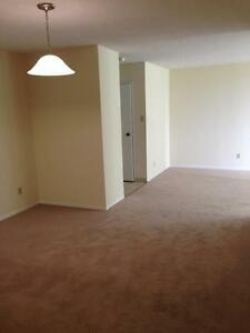 130 & 140 Lincoln Road - Two Bedroom Apartment Apartment... Kitchener / Waterloo Kitchener Area image 7