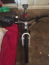 "Reebok Harlem mountain bike 24"""