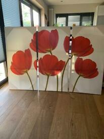 Extra large poppy canvas prints