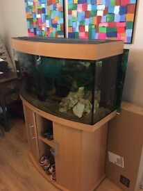Juwel Vision 180 litre fish tank beech colour, with accessories