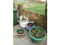 Free pots, chair and tall plant post