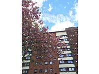 Shared Flat near Gateshead Town centre double & single