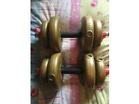 2x York Dumbbells weights