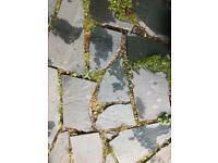 Green grey slate slabs
