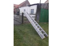 treple ladders and double roof ladder