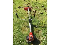 Solo heavy duty strimmer