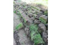 Dirt / soil / top soil