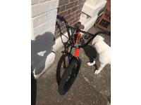 Custom bmx fitbike