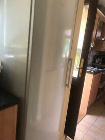 Tall Bosch fridge
