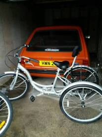 Ammaco adult tricycle