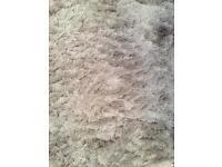 Gold/silver shag pile rug