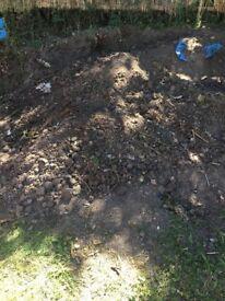 Free garden soil Cambuslang /south Lanarkshire