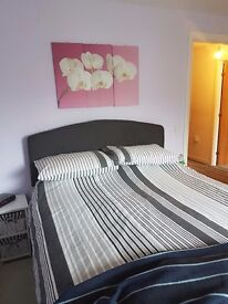 Exchange wanted 1 bed newmachar for same southside of city b/f 1 bed for exchange similar