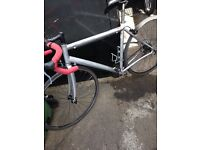 Specialized Allez sport road racer