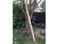 Garden 8ft Corner Intermediate Morticed Concrete Post
