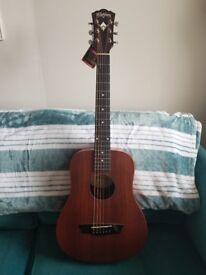 Washburn wdm18sns mini dreadnought (This guitar is no longer in produxtion)