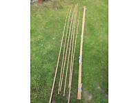 Garden bamboo canes