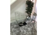 Beautiful large glass table and plant.