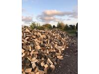 LOGS FOR SALE (free delivery)