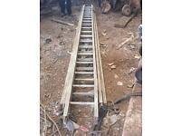 Three section ladder