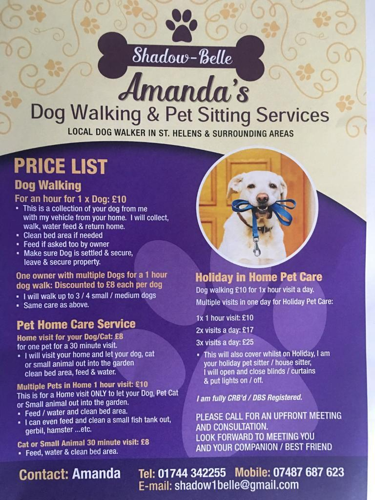 dog walker holiday home care pet sitter in st helens dog walker holiday home care pet sitter in st helens merseyside gumtree