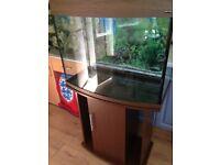 SALE-PRICE REDUCED---Aquarium-Fish Tank full set up