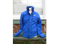 Hollister Mens or Boys Winter Coat Blue Size Medium