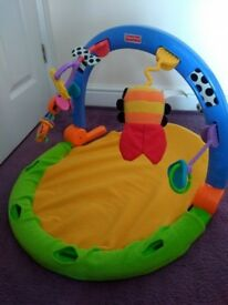 Baby bundle - Play gym, play mat, baby bath, tummy time cushion, toys, swimming seat, bouncer