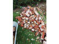 Free red bricks some broken some solid