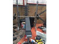 Body Solid Bench and Shoulder Press