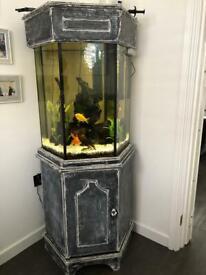 Fish Tank only (no fish )