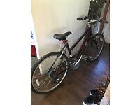 Women's Pendleton Brooke Hybrid Bike