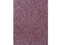 Carpet - 20 square metres of 80% Wool / 20% man made fibres carpet in dusky pink.
