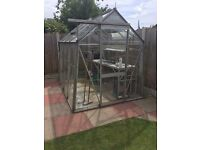 Aluminium Greenhouse - 8ft x 6 ft with aluminium staging
