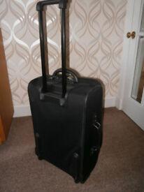 Wheelie travel case (bargain)
