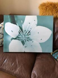 Canvases - selection of 7