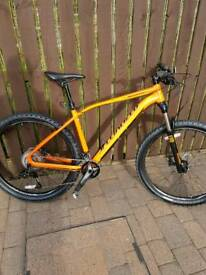 Specialized Rockhopper Pro Evo mountain bike