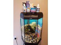 Aqual Hexigon fish tank 60 litre