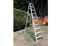 10 TREAD FIBERGLASS STEPLADDER