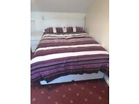 Double Bed Frame (Mattress included)