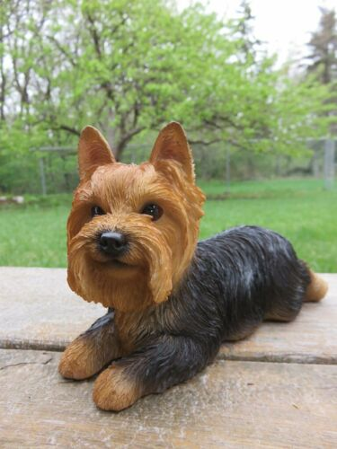 Yorkshire Terrier Puppy Dog Lying on Tummy Figurine Statue Resin Ornament New