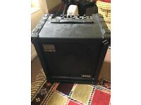 Roland Bass Cube 100 with road case