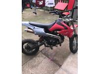 Lifan 110 pit bike