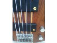 Peavey C5 Thru Neck Bass Guitar With Lane Poor Pickups