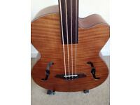 Fretless electro acoustic bass Aria with paded soft case
