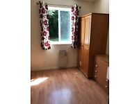 A big single room to let