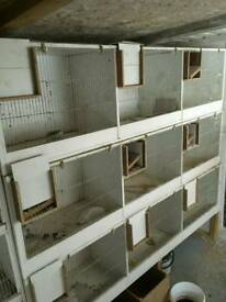 Budgie breeding cages